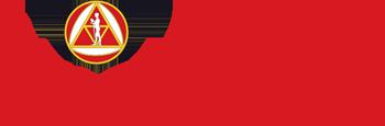 univerzitet_singidunum-logo1